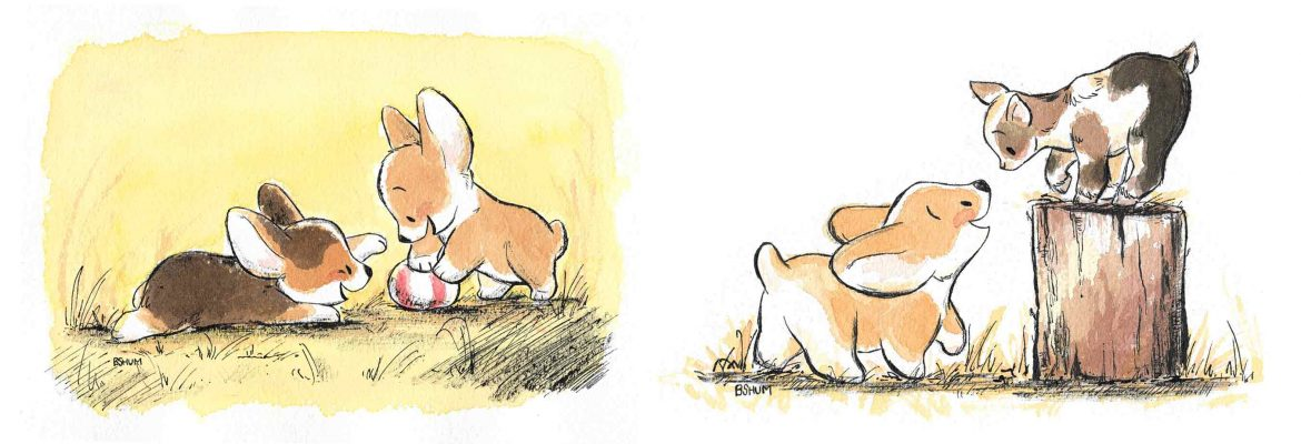 Corgi Show at Gallery Nucleus